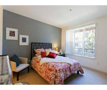 Furnished 2Bd/2Ba Apartment
