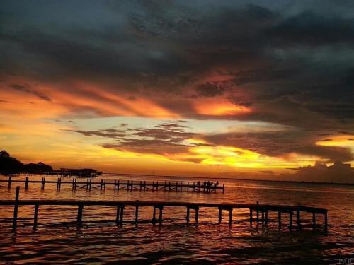 Gulf Breeze FL
